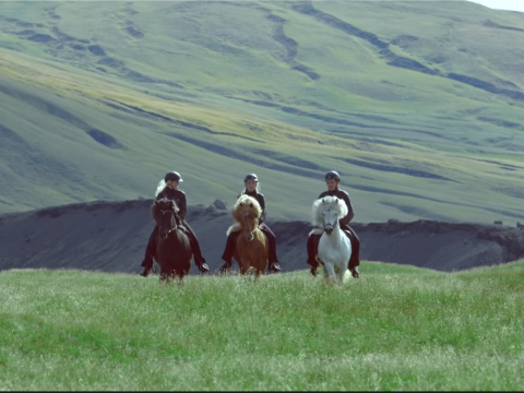 The Horses of Iceland official video
